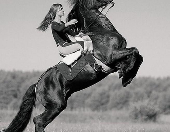 держится за гриву лошади встал на дыбы