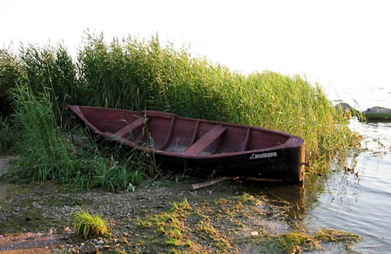 лодку унесло в заросли в камыши удуло ветром и волнами